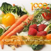 บทความสุขภาพ อาหารเสริมและวิตามินจำนวน 10 บทความ By หนึ่งพันบทความ (AFS-07FEB-010)