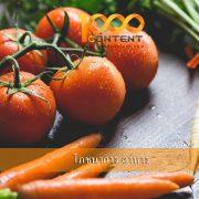 บทความโภชนาการ อาหาร จำนวน 10 บท By หนึ่งพันบทความ (AFS-19MAY-081)